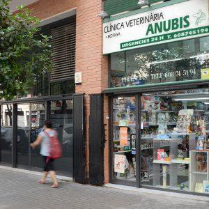 anubis-clinica-veterinaria
